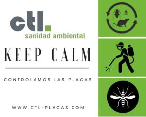 Keep-Calm-CTL