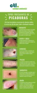 Guía para diferenciar los distintos tipos de picaduras de insectos