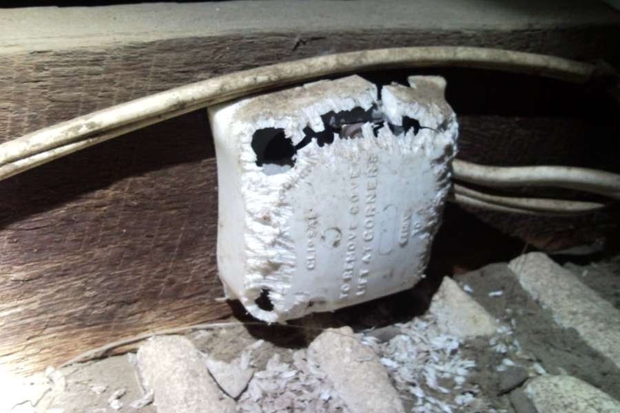 imagen de caja de luz destrozada por roedores