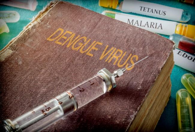 El dengue es una de las enfermedades transmitidas por estos vectores