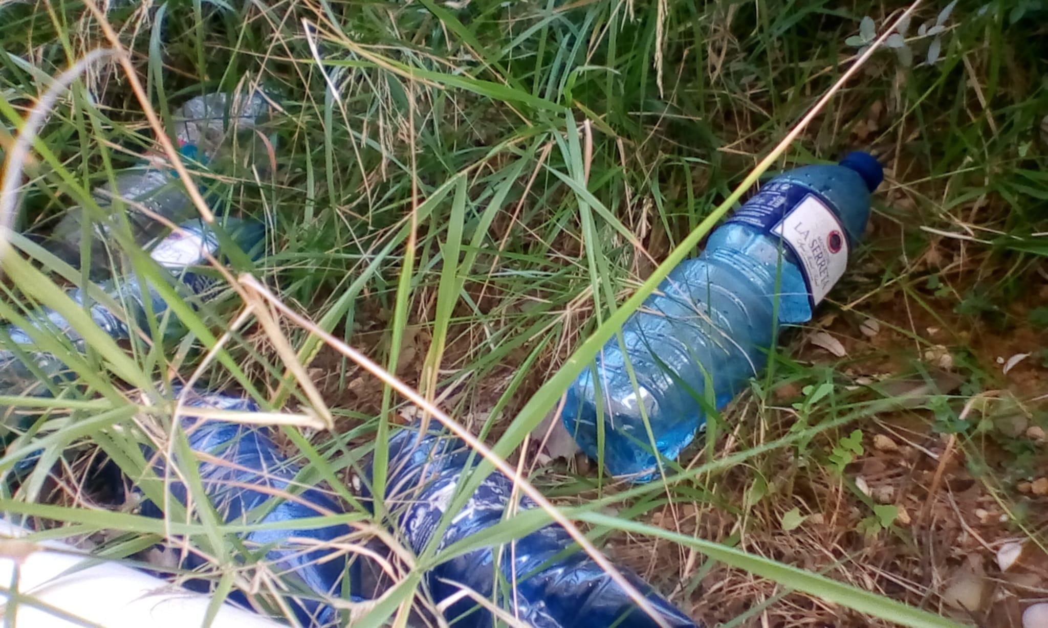 la basura en los barrios provoca la  proliferación de las plagas
