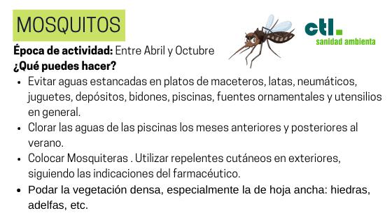 el mosquito es una de las plagas mas molestas y frecuentes del hogar
