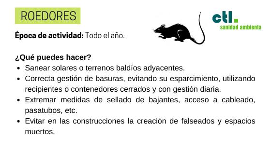 los roedores son algunos de los tipos más frecuentes de plagas a combatir en el hogar.