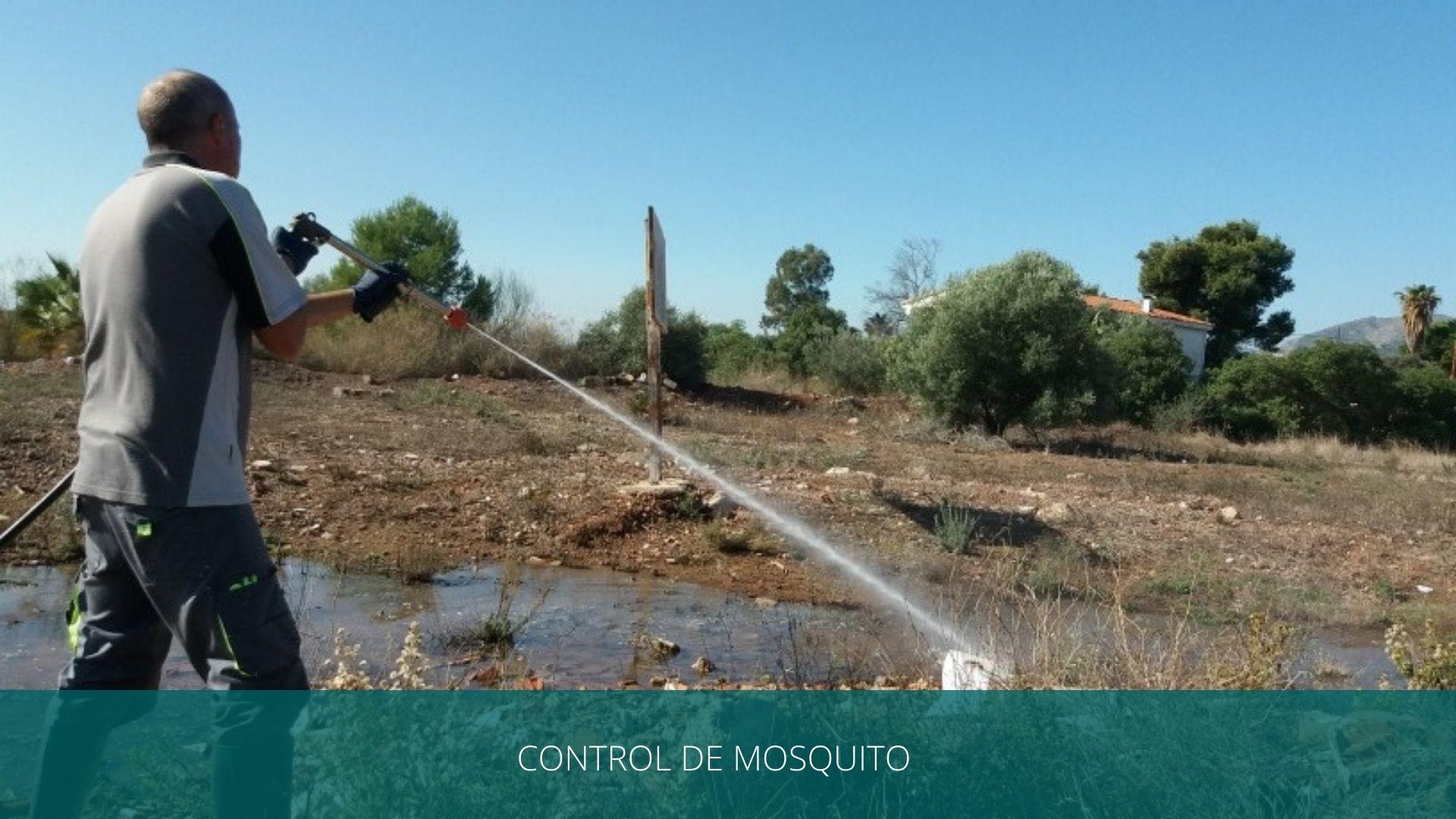 control de mosquitos